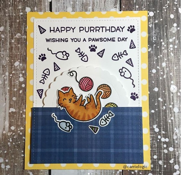 Cute Birthday Card Ideas for cat lovers