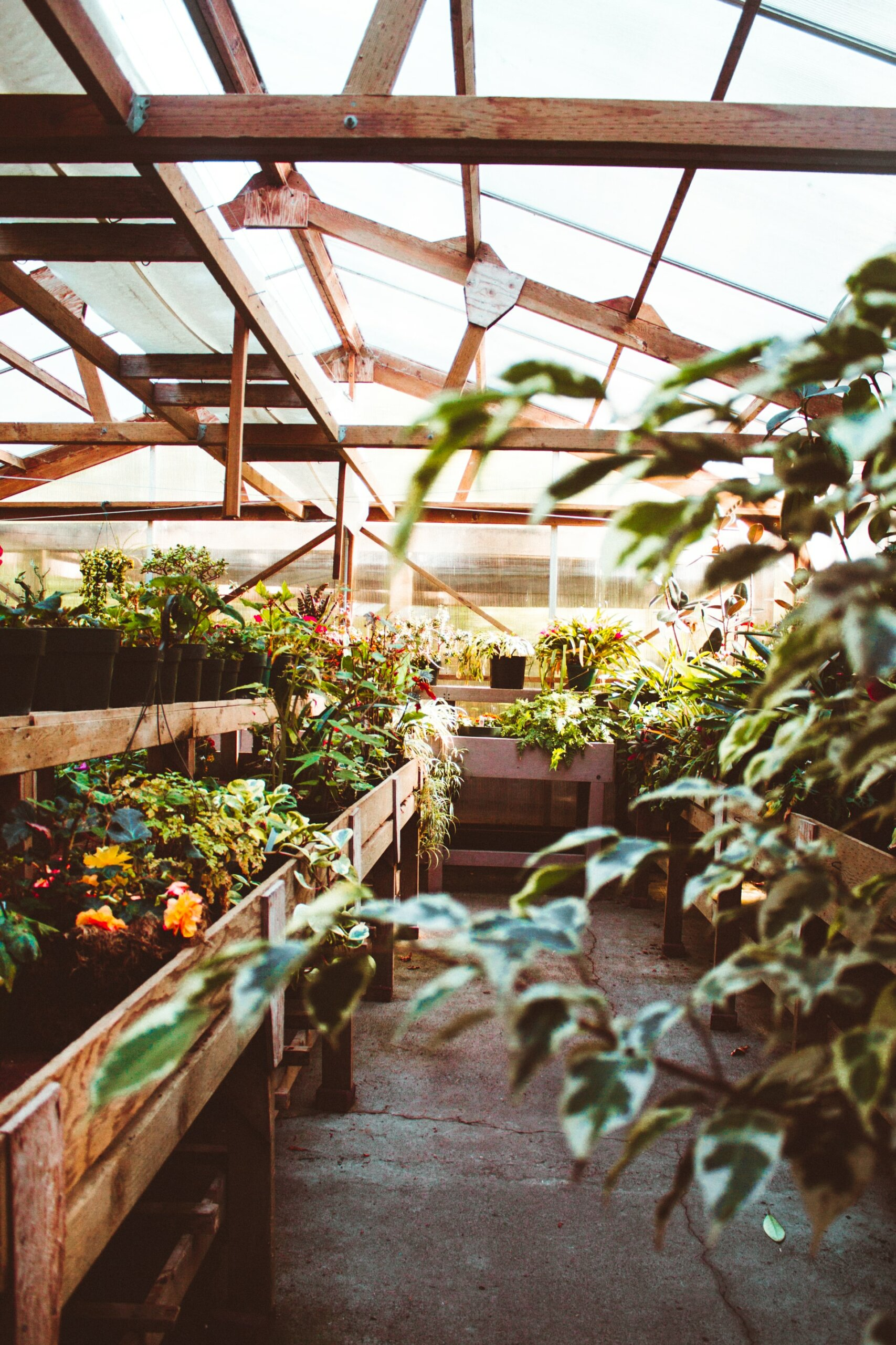 How to Get Your Garden Ready for Fall